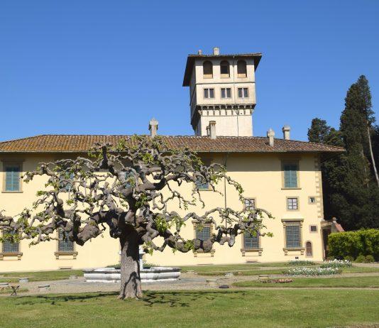 Le ville di Castello