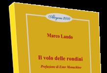 Marco Lando